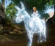 Cabochâme, cette tête de mule, est fin prêt pour la bataille !