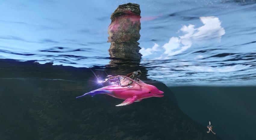 Monture dauphin