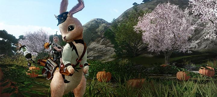 Les lapins sont de sortie sur la boutique !