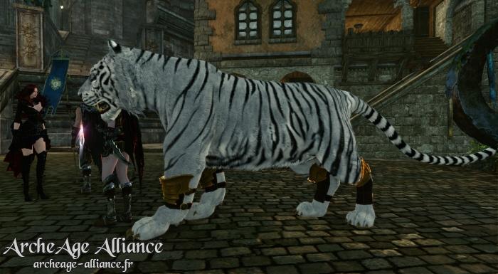 Aperçu du tigre blanc en jeu