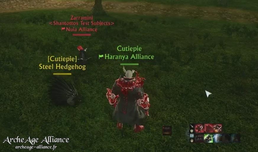 Le hérisson, familier de combat des Chaotes