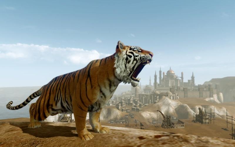 Kamari - monture tigre