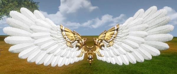 Planeur ailes d'immortalité